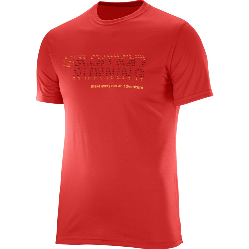 Tricou multisport Salomon Running Graphic Tee Barbati